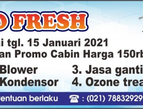 Promo Fresh